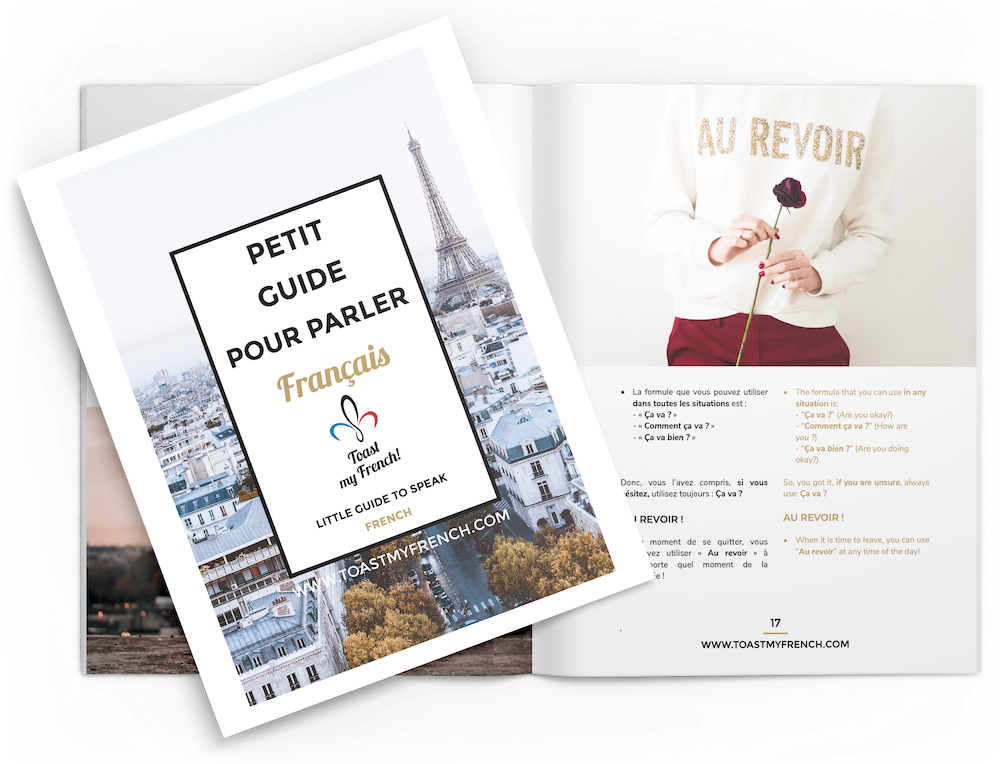 Toast my French free ebook petit guide pour parler francais