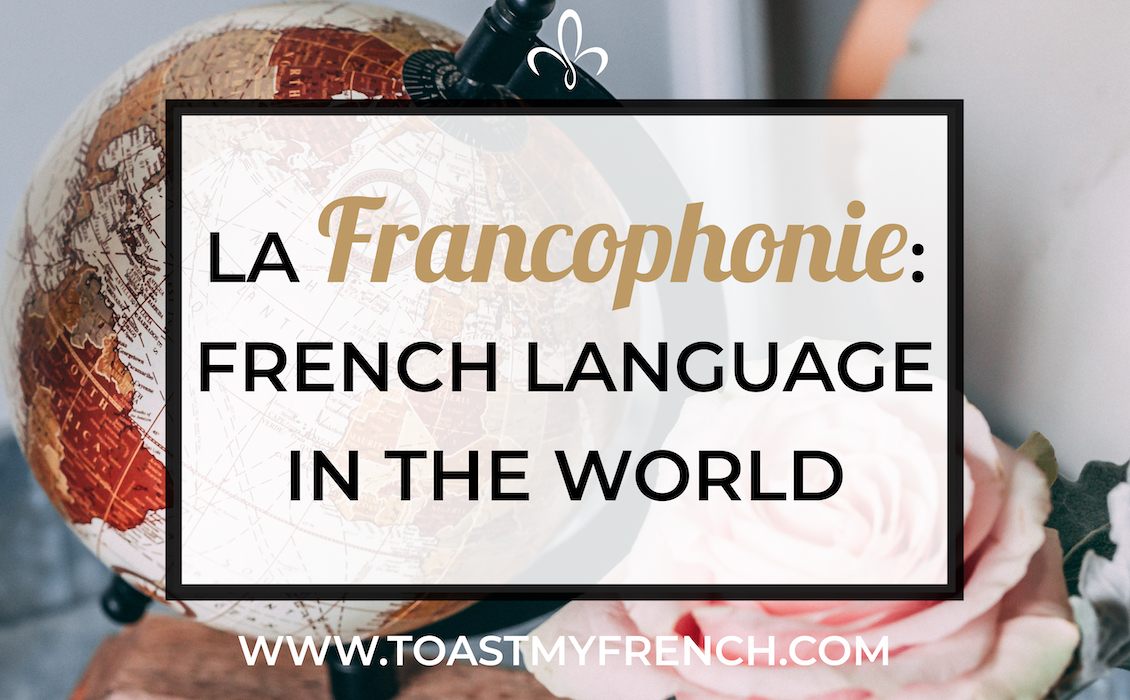 francophonie the french language in the world